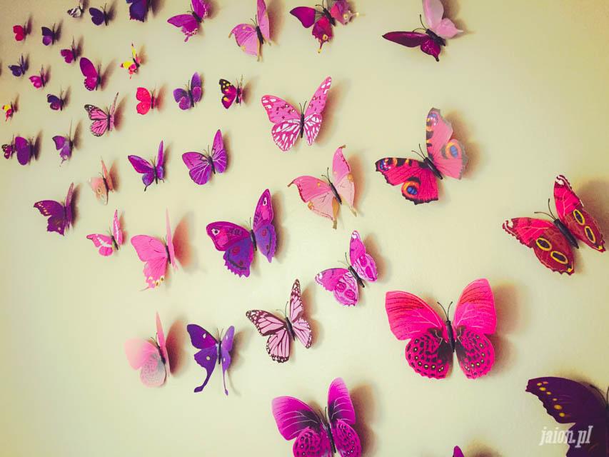 mieszkanie-w-ameryce-motyle-usa-kalifornia-blog-6