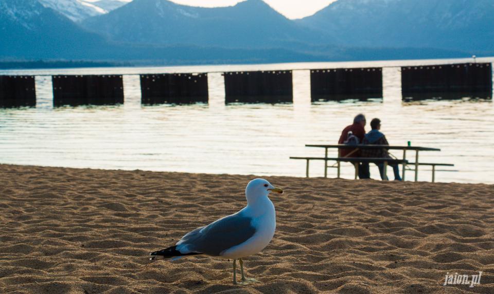 ameryka_kalifornia_tahoe_lake_jezioro-54