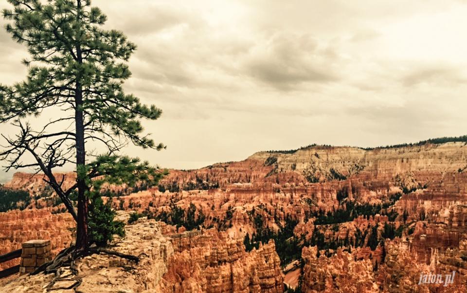 bryce-canyon-utah-8