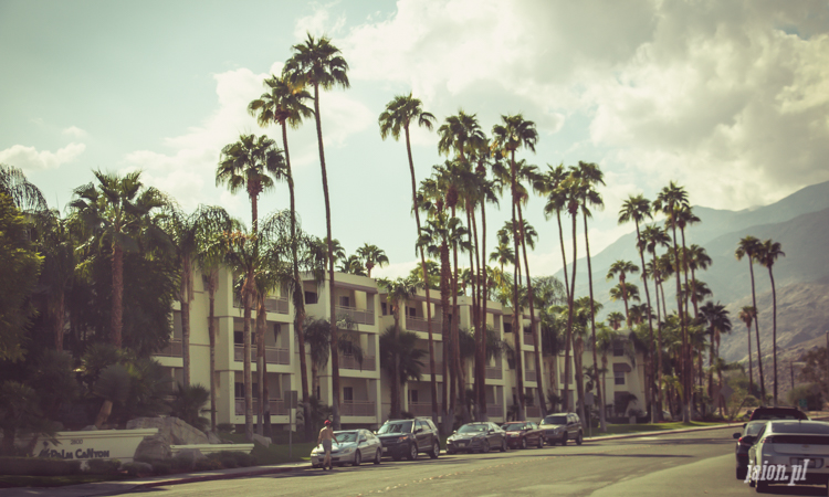 palm-springs-64-16