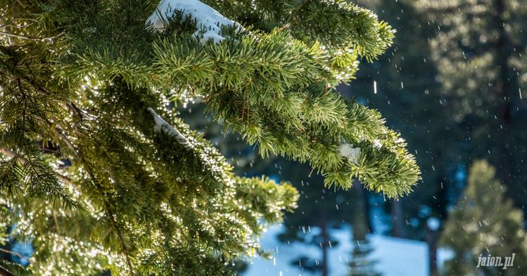 tahoe-jezioro-kalifornia-zima-201625-22