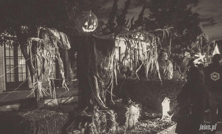 halloween-w-ameryce-201627-10