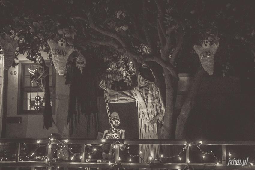 halloween-w-ameryce-201627-12