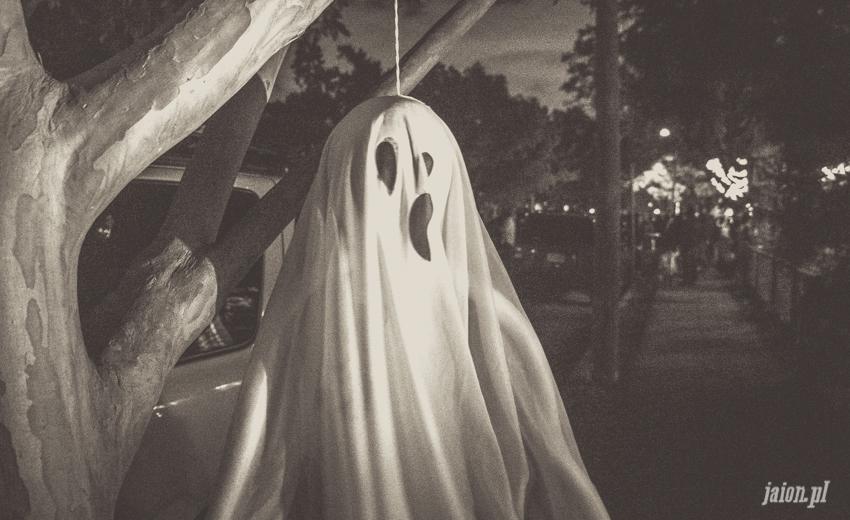 halloween-w-ameryce-201627-15