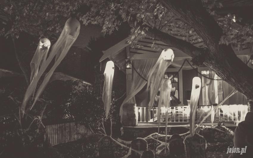 halloween-w-ameryce-201627-23