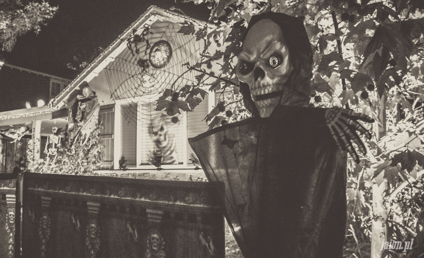 halloween-w-ameryce-201627-9